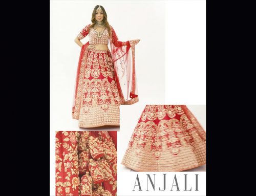 Look Book – Anjali