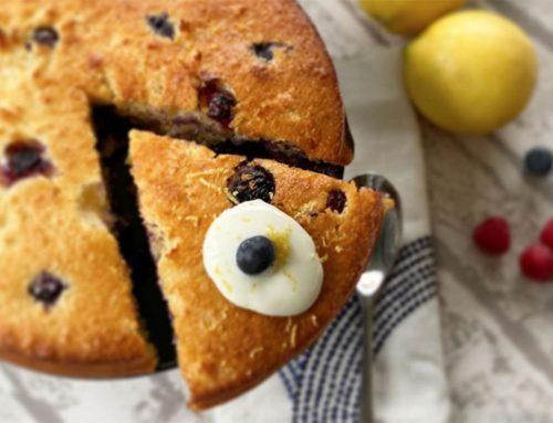 Weekend Treats | Coconut & Blueberry Sponge Cake
